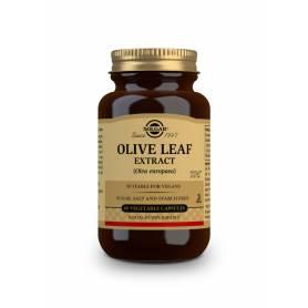 Olivo – Extracto de Hoja – (Oleo europaea). 60 cápsulas vegetales