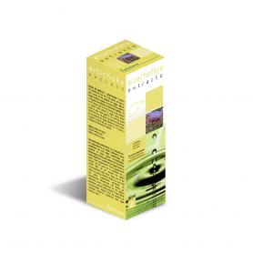 Extracto de Alcachofera 50 ml