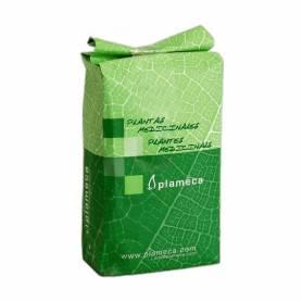 Amapola Semillas 1 Kg
