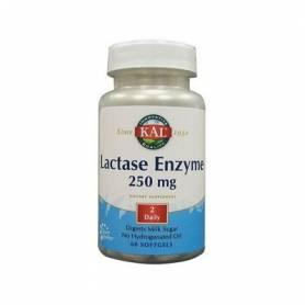 LACTASE 250mg 60cap KAL Plantas Medicinales 13,36€