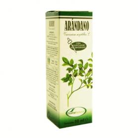 EXTRACTO ARANDANO 50ml SORIA NATURAL Plantas Medicinales 6,87€