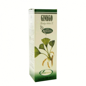 EXTRACTO GINKGO 50ml SORIA NATURAL