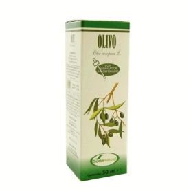 EXTRACTO OLIVO 50ml SORIA NATURAL Plantas Medicinales 5,34 €