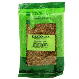 EUFRASIA PLANTA TRITURADA 50gr PLAMECA Plantas Medicinales 1,84€