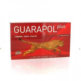 GUARAPOL PLUS 20amp PLANTAPOL Suplementos nutricionales 19,81€