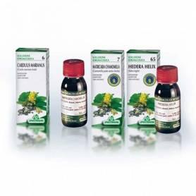 TINTURA MADRE GINSENG 50ml SPECCHIASOL Plantas Medicinales 9,35€