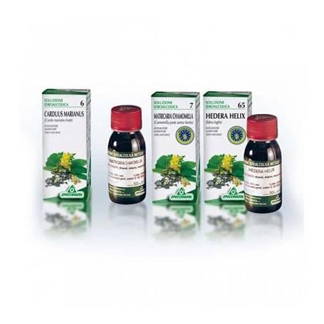 TINTURA MADRE CASTAёO DE INDIAS 50ml SPECCHIASOL Plantas Medicinales 9,35€